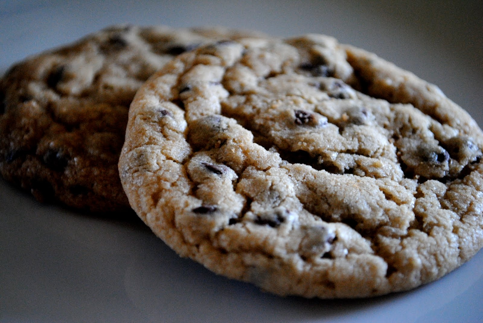 Best Thick Gooey Chocolate Chip Cookie Recipe