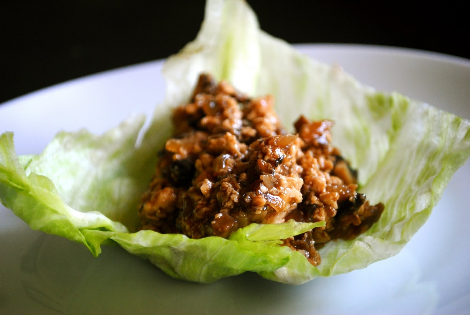 Tofu Lettuce Wraps | Fat Girl Trapped in a Skinny Body