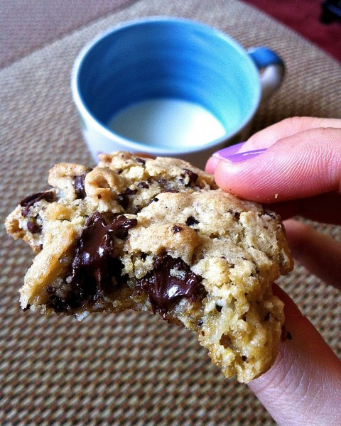 Oatmeal Coconut Chocolate Chip Cookies | Fat Girl Trapped in a Skinny ...