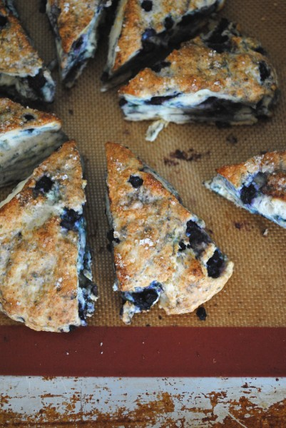 blueberry cream scone 1