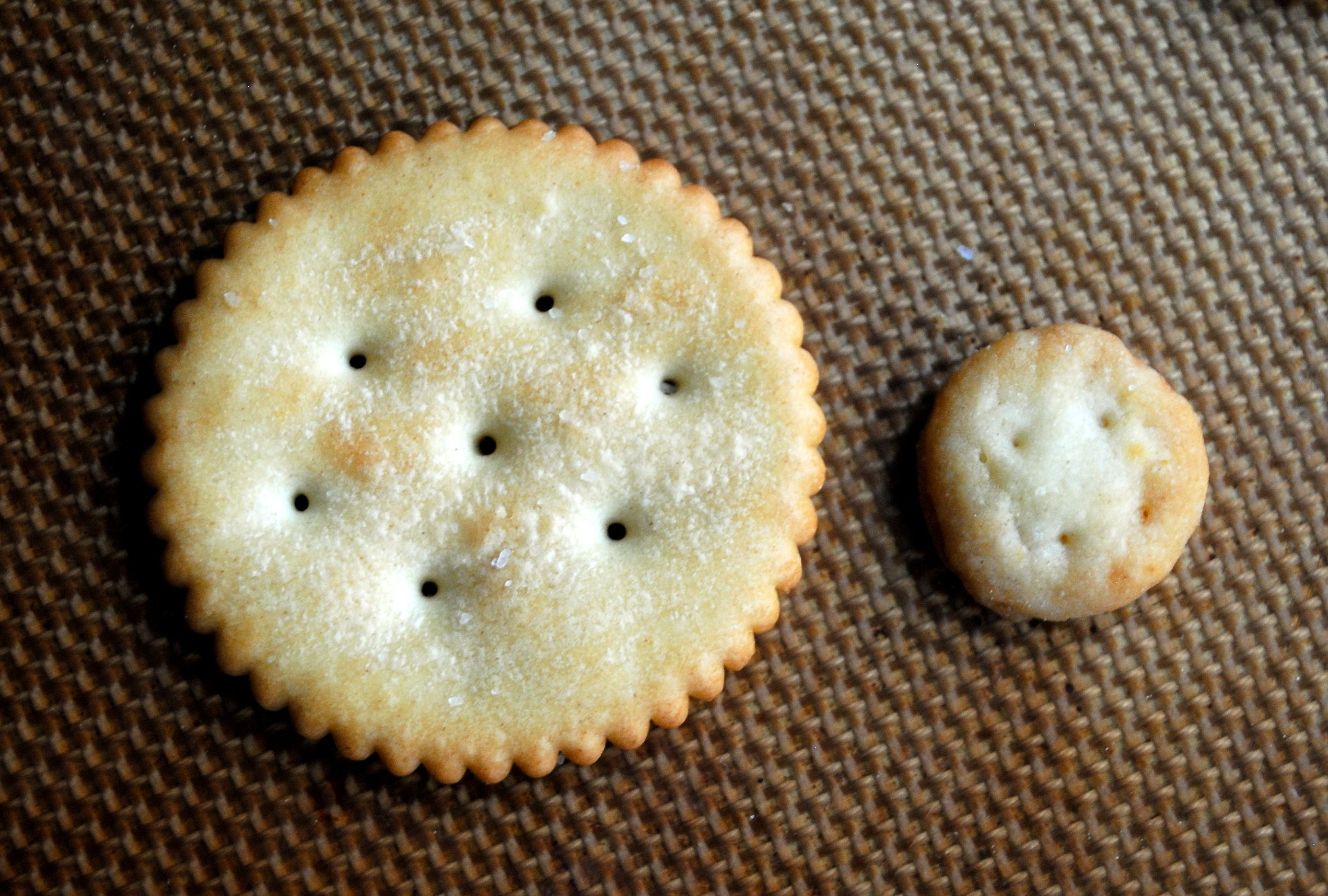 Homemade (mini) Ritz Crackers | Fat Girl Trapped in a Skinny Body
