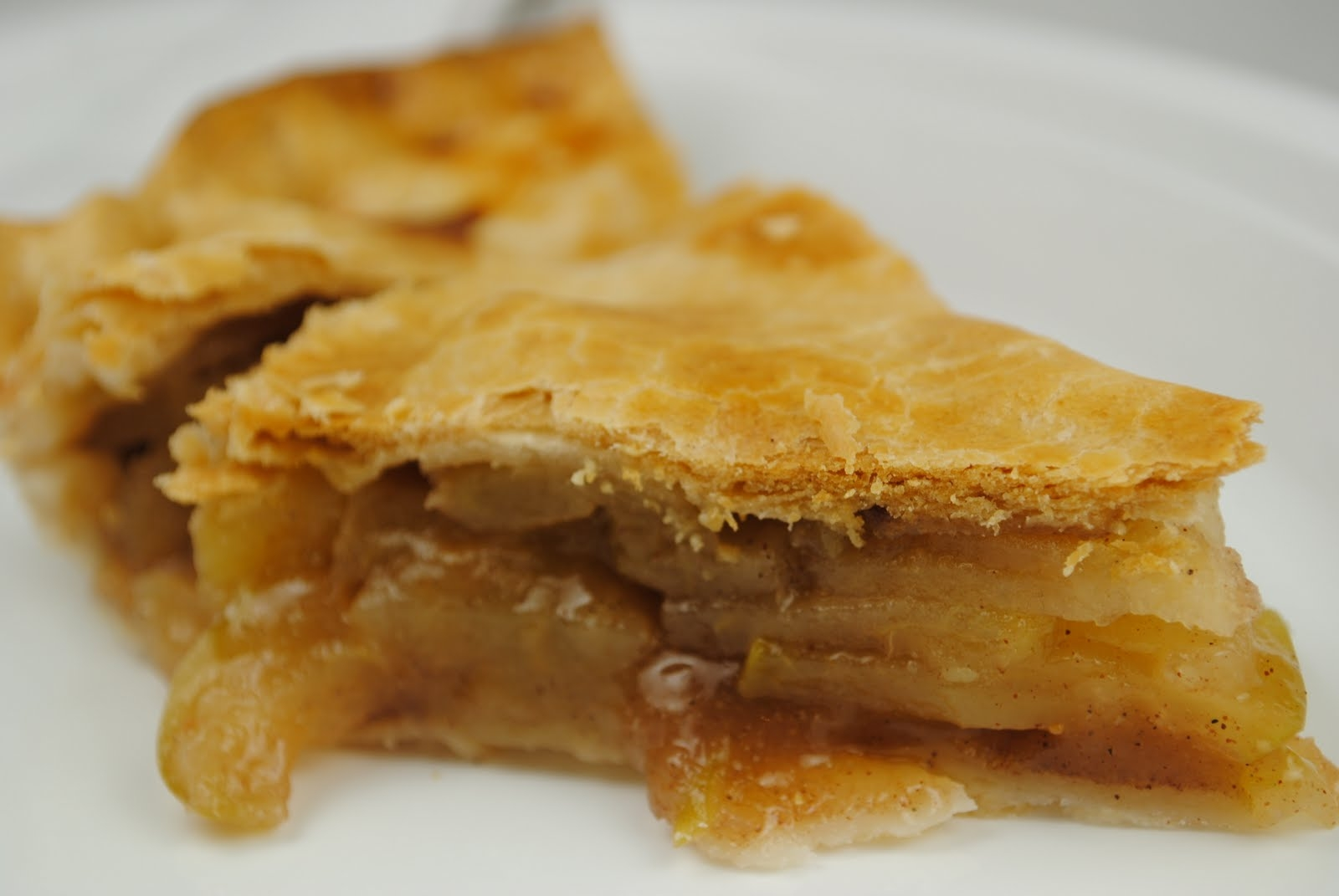 Double Crust Apple Pie | Fat Girl Trapped in a Skinny Body